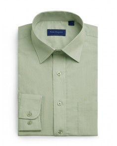 Peter England Plain Non Iron Shirt -Sage